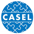 casel.png