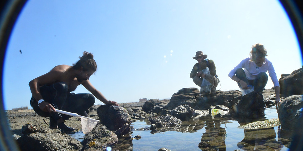 2020 Science + Surf Field Course