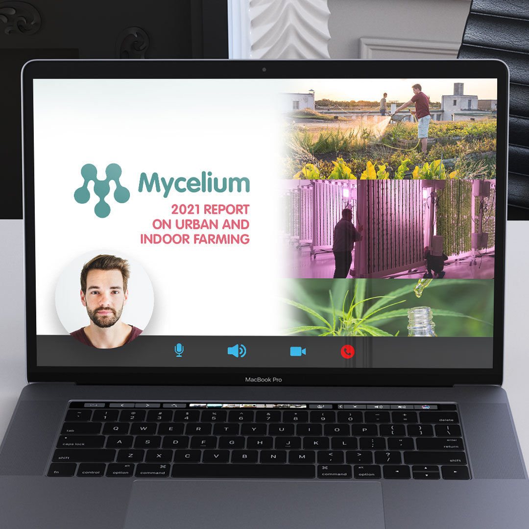 LIVE PRESENTATION - MYCELIUM REPORT 2021
