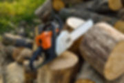 Chainsaw Resting on tree stumps.jpeg