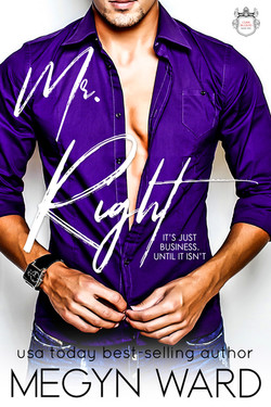 mr right kindle