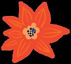 DE_C5-brandflower_R1-01.png