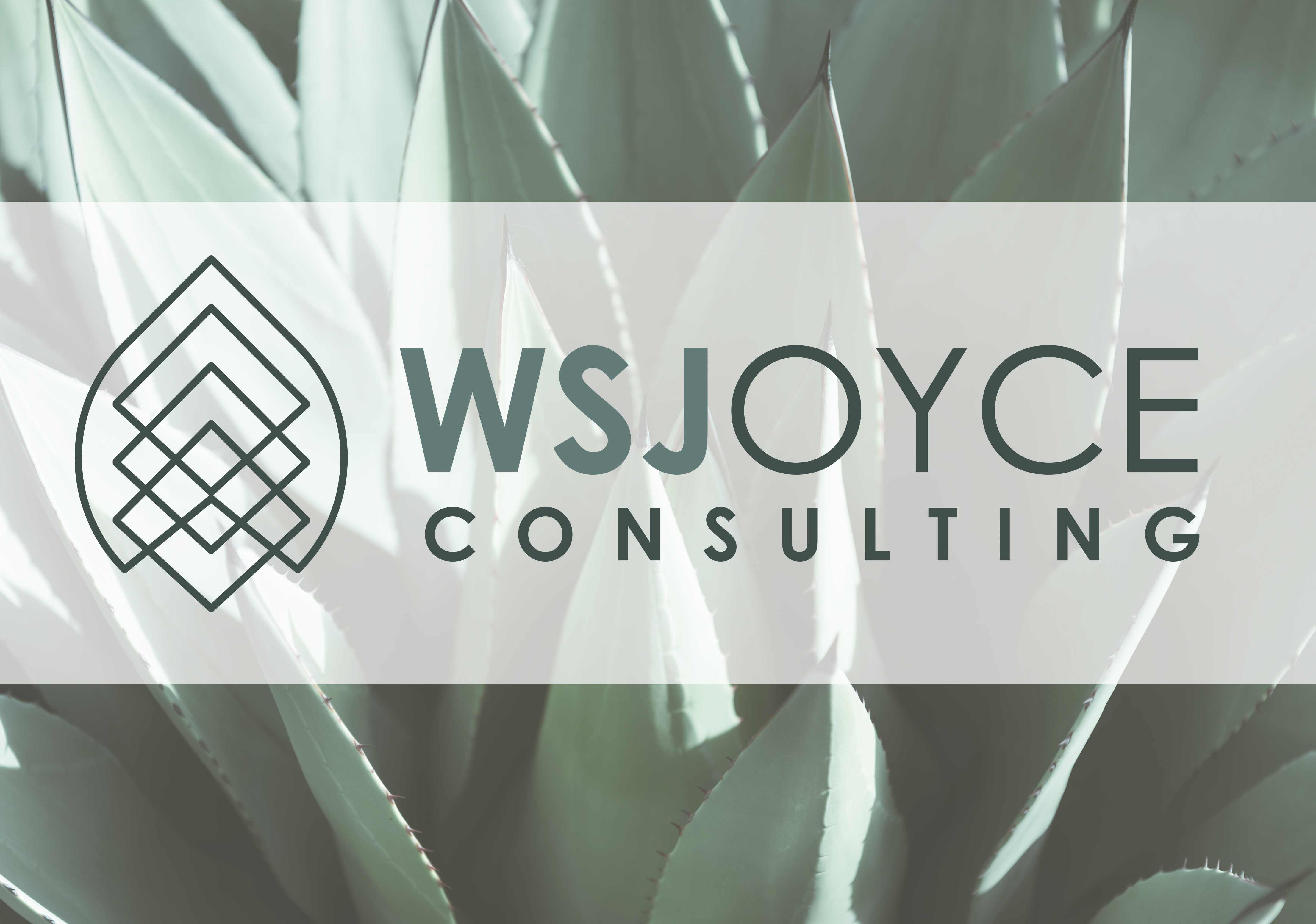 WSJoyce Consulting