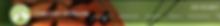 Screen Shot 2019-09-29 at 5.39.44 PM.png