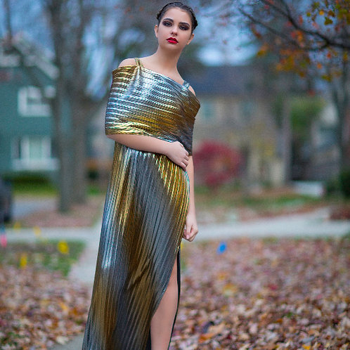 Gold and Silver Pleated Off-Shoulder Gown