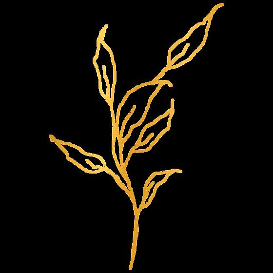 golden-element-01.png