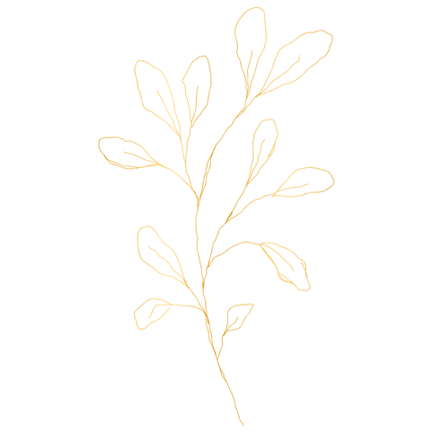 golden-element-016.png