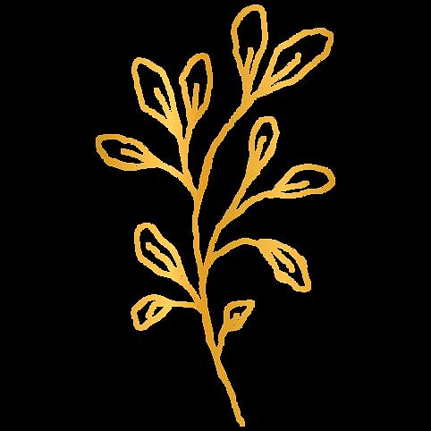 golden-element-016.png