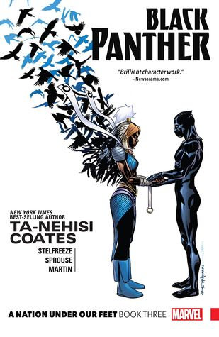 Black Panther Book 3 - Nation Under Our Feet