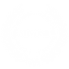 SDVOSB-logo-color copy.png