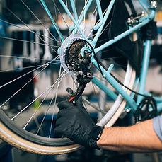 cycle image.jpg