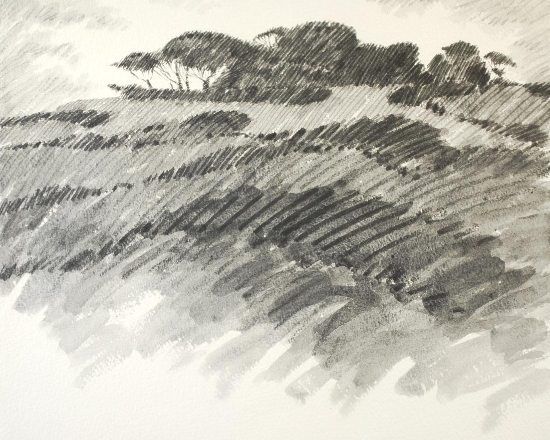 Northumbrian Moorland drawing 1