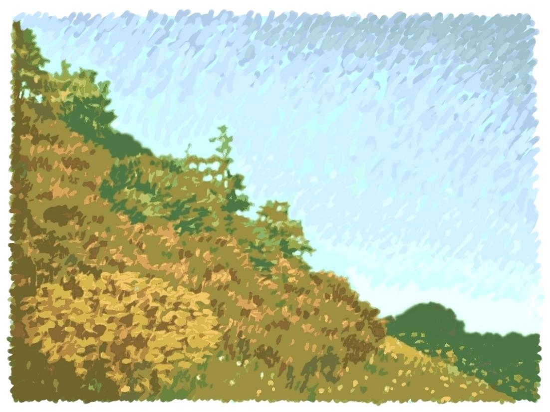 Northumbrian Hillside 1
