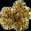 Thumbnail: LIGURIA PINE KUSH · 1 GR a partire da :