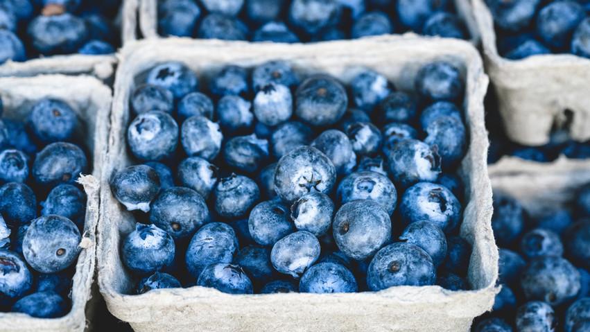 Blueberries: Summer Fruit Spotlight