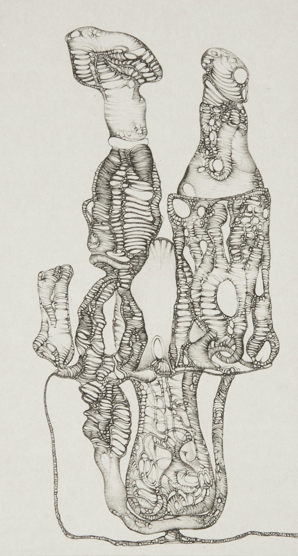 Cécile Reims, J'ai corps communicants, d'après Fred Deux, 1975 Epreuve sur papier vélin d'Arches, 19