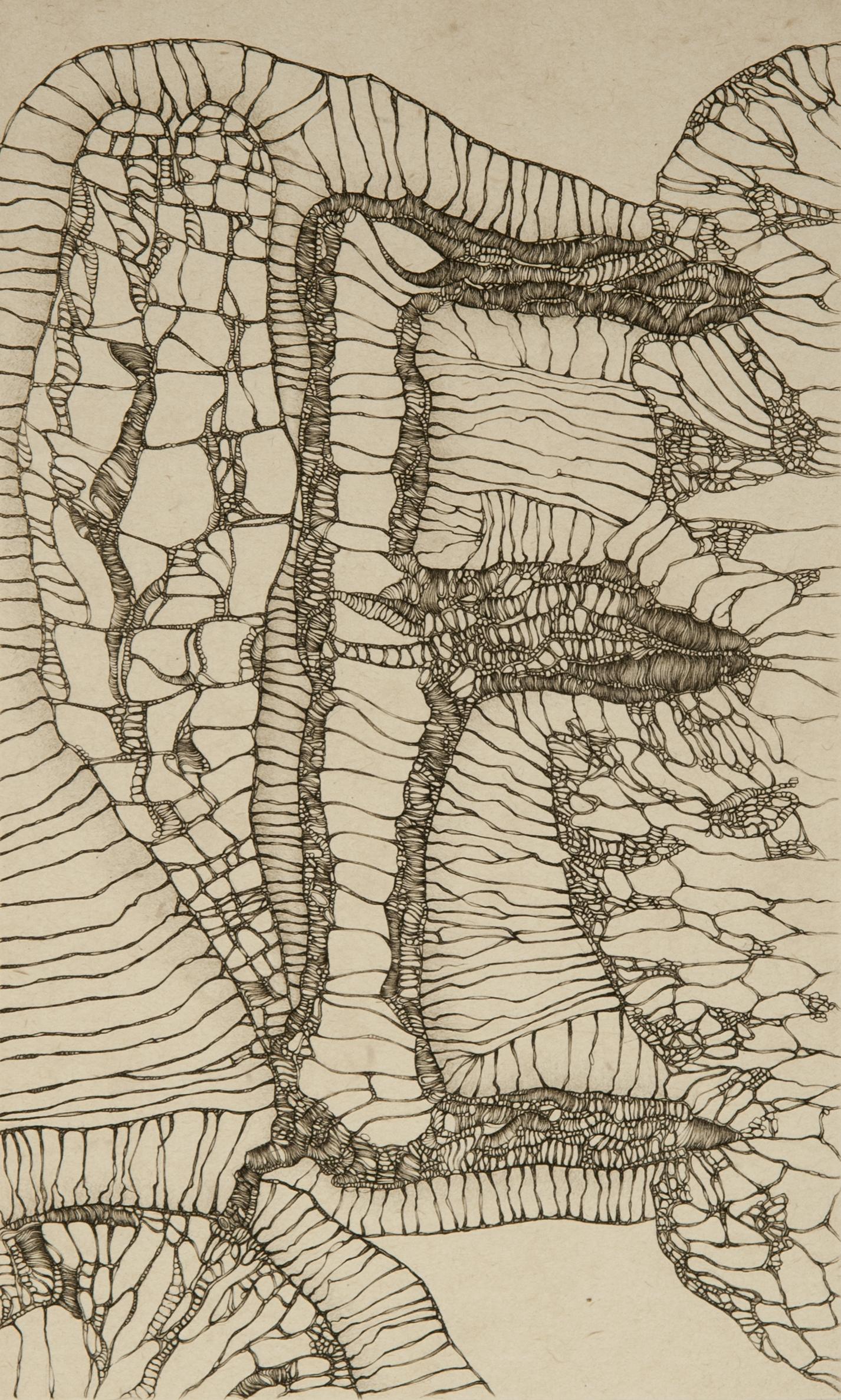 Cécile Reims, Hans le hérisson, d'après Fred Deux, 1972 Epreuve sur papier vélin d'Arches, 26,6 x 16