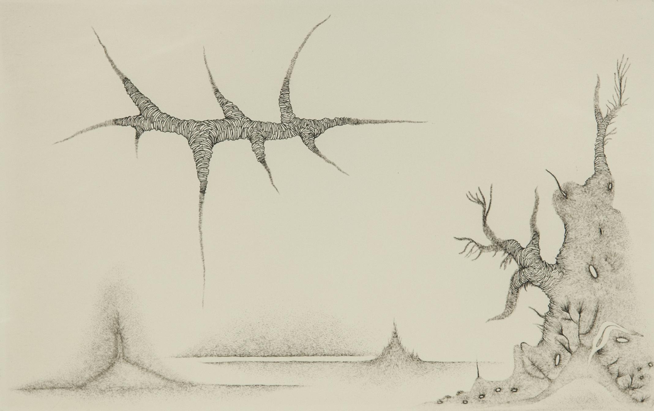 Cécile Reims, Cosmogonies, 1959 Burin, 14 x 21,8 cm