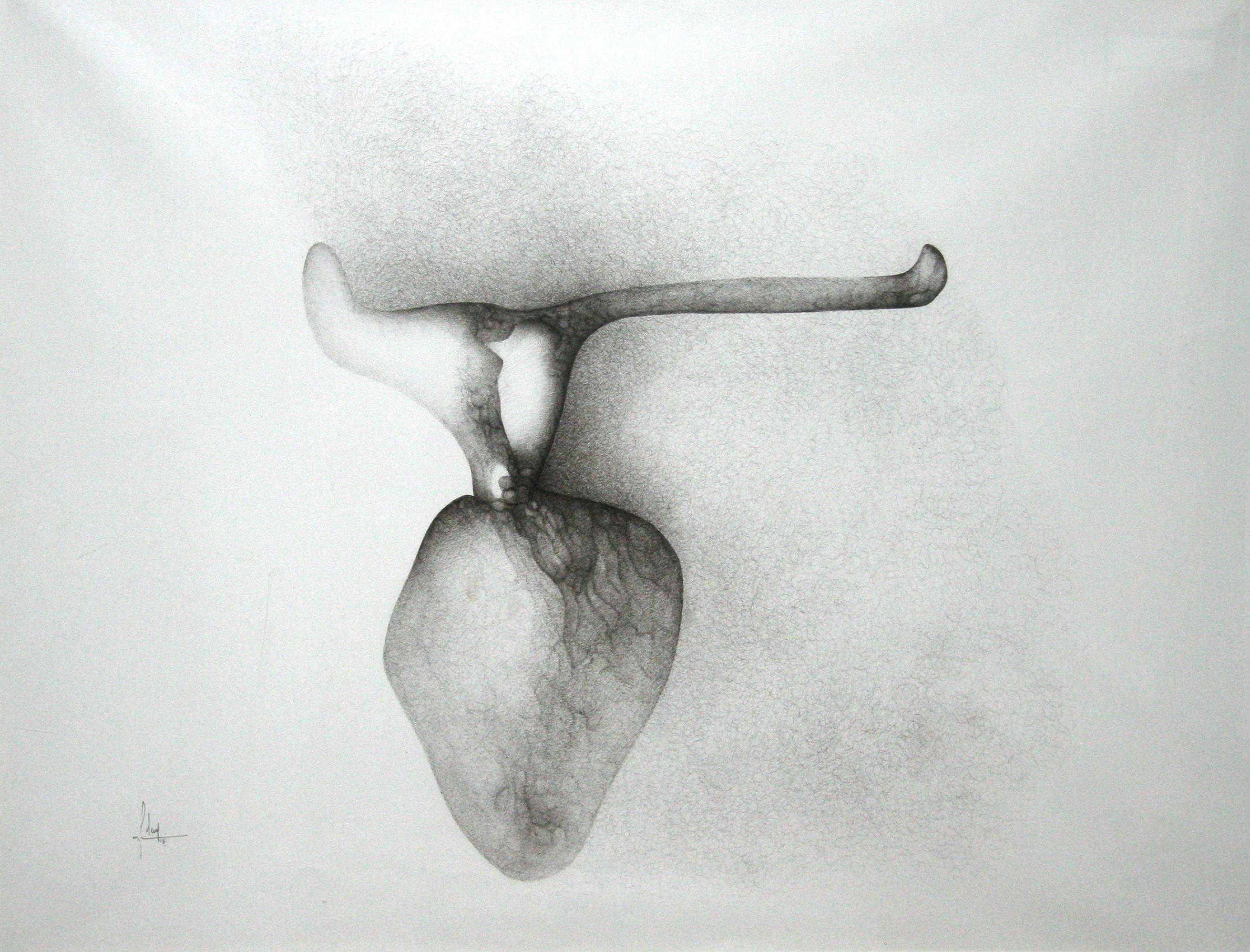 Fred Deux, Coeur de boeuf, 1962, encre de Chine sur papier sirius, 72 x 102 cm