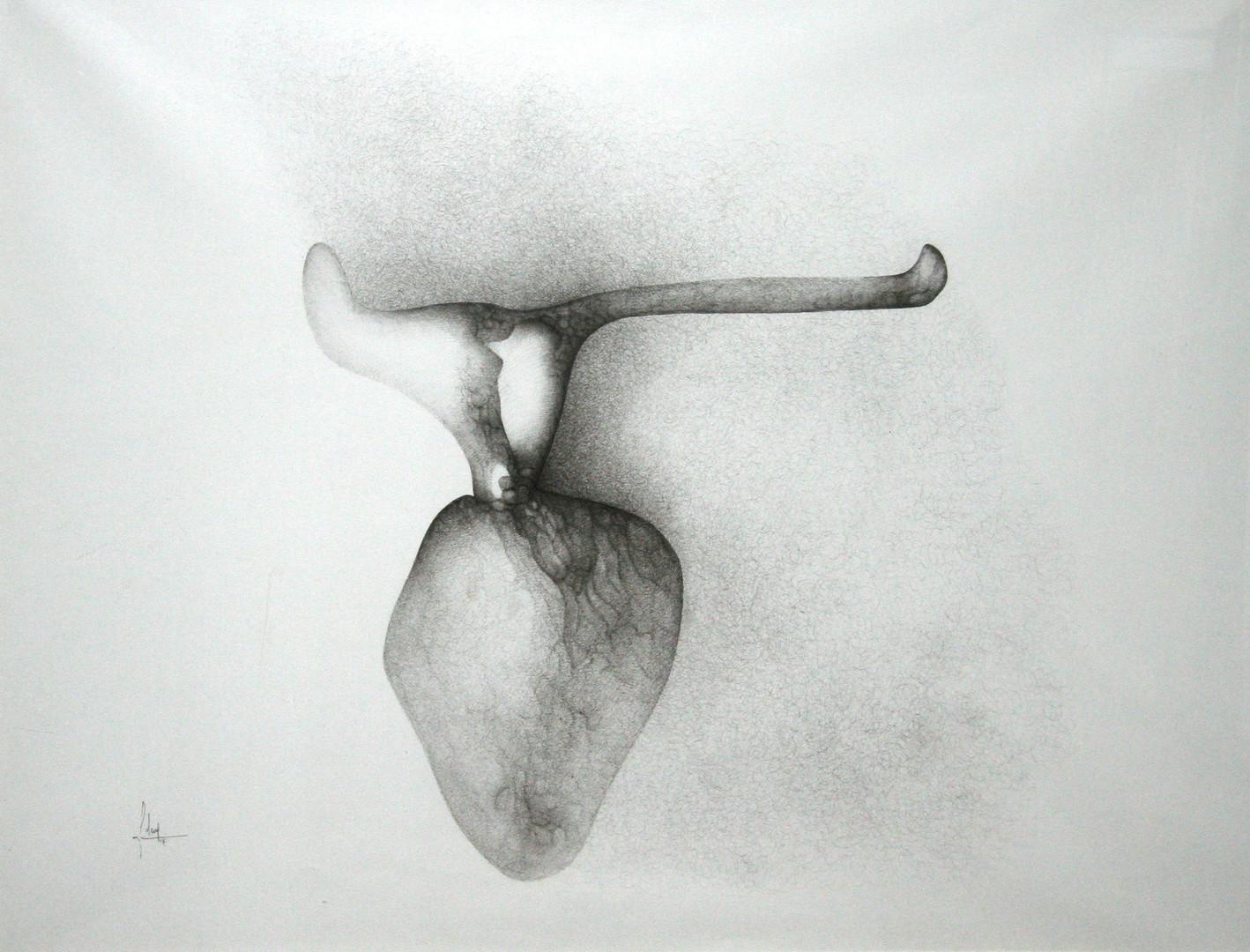 Fred Deux, Coeur de boeuf, 1962