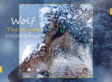 The Wolf จากผู้ล่าสู้เพื่อนตาย