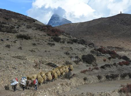 Népal 2019: trek dans la vallée secrète de Naar Phu