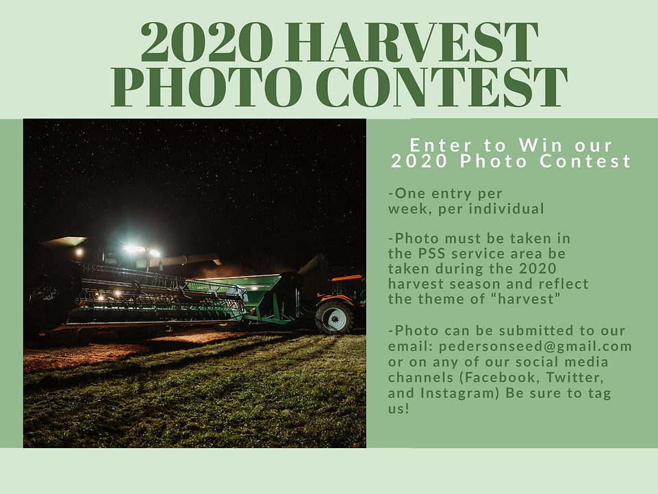 Photo Contest Website.png