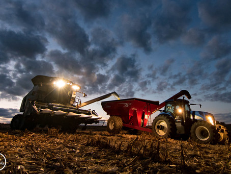 Dealing With Harvest Stress