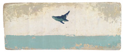 Aqua Turquesa (Happy Whale)