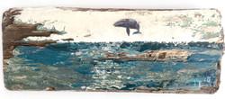Solo Grey Whale No.1