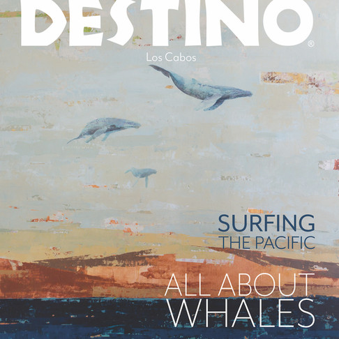 """Cover Art for Destino Los Cabos Magazine """"All About Whales"""""""