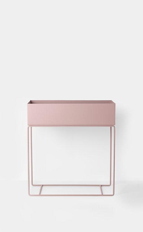 PLANT BOX - ROSE