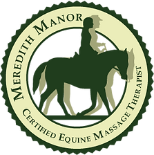 certified-equine-massage-therapist.png