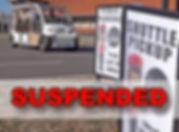 suspended.jpg
