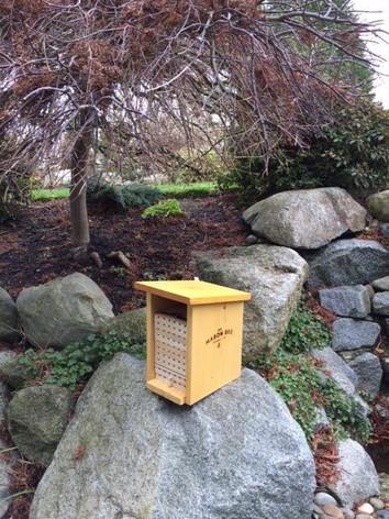 Southwest Mason Bee House