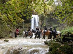 Photos chevaux 2.3