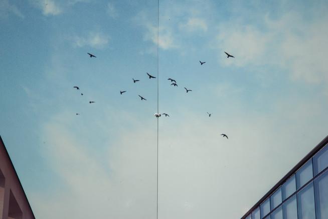 stockprt billboard sky .jpg