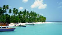Cool Ocean Breezes