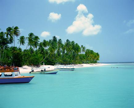 Пингелап - остров цветовой слепоты