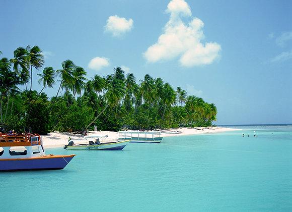 Welcome to Mauritius
