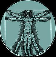 human-body2.png