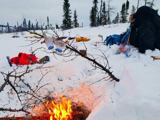 Rookie Iditarod: Don's Cabin - Shageluk