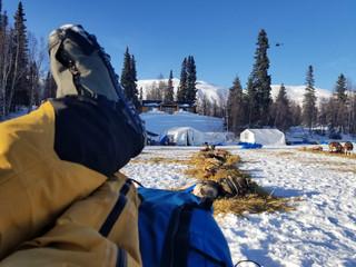 Rookie Iditarod: Start - Finger Lake