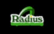 Radius Carpet & Tile LOGO4-4.png