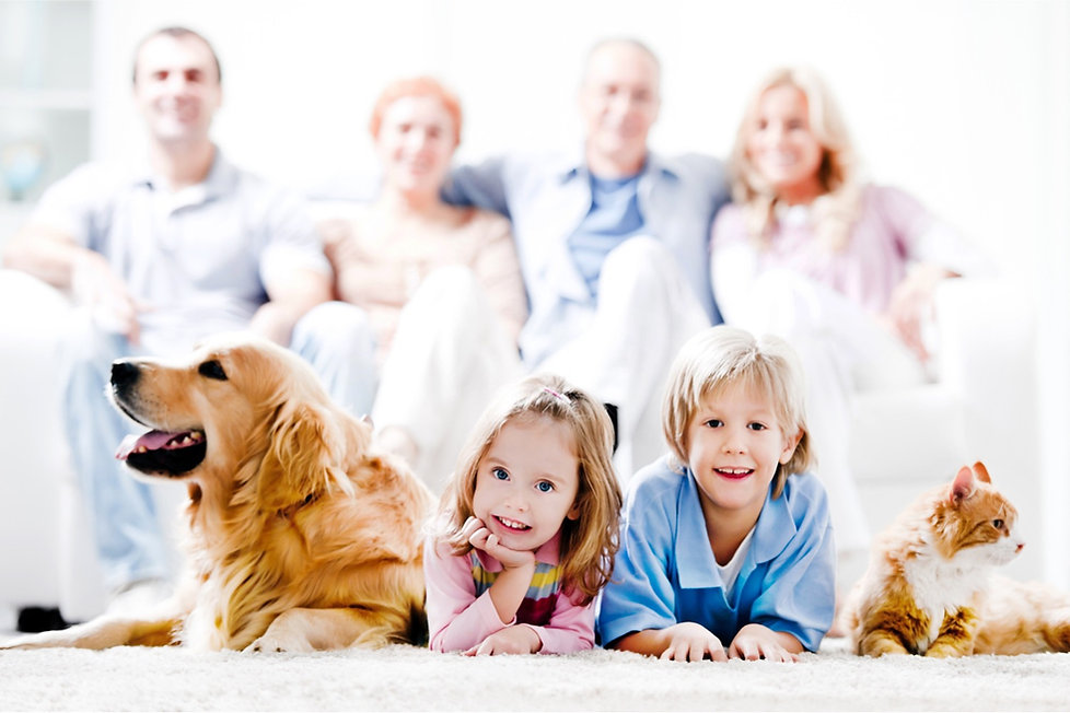 cheerful-family-with-pets-picture-id1852