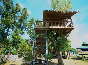 NW FARM_TreeHouse.jpg