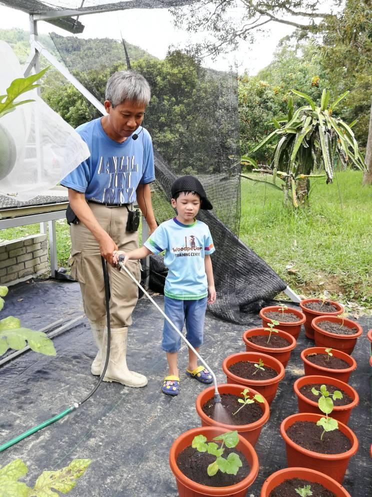 Comfort Organic Farm (26)