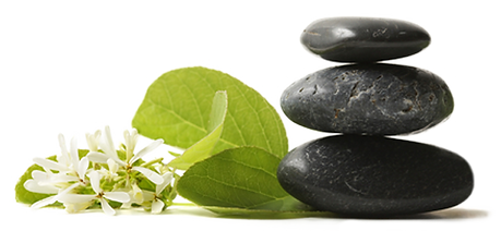 therapeutic services, nutritional, consultation, stress relief, coaching, health, massage, detox