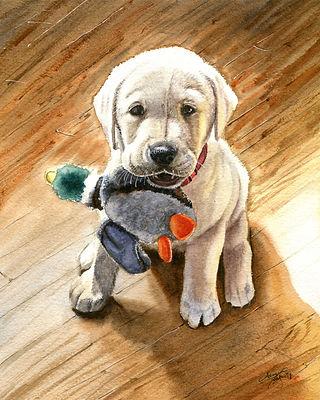 lab puppy.jpg