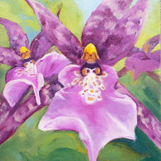 Invasion of the Orchids